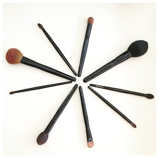Wayne Goss brush review